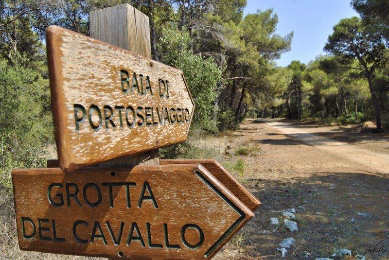 Grotta del Cavallo a Porto Selvaggio