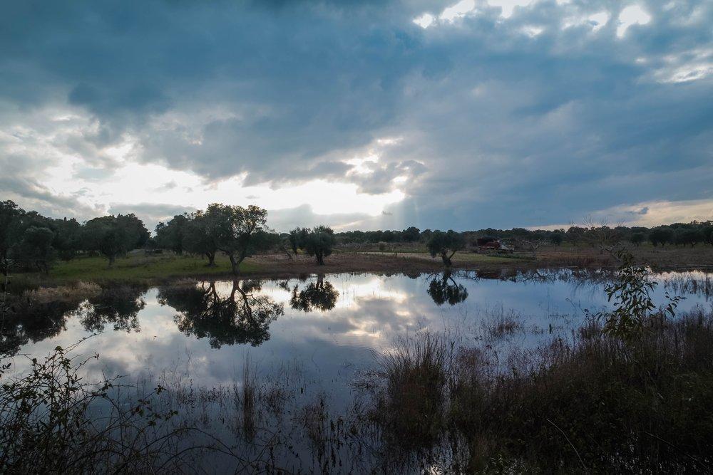oasi-delle-cesine-nel-salento