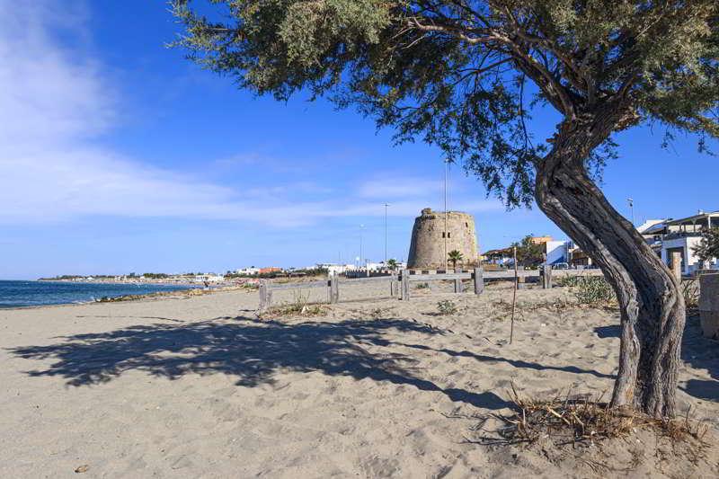 Vacanze in Famiglia a Torre Mozza